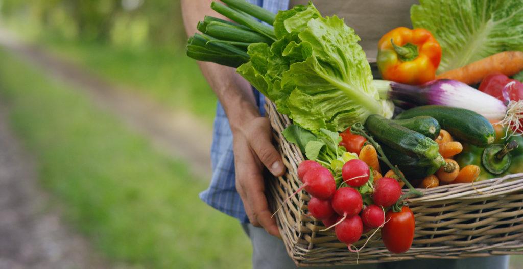 Des perturbateurs endocriniens aussi dans notre alimentation ?